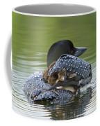 Loon Chick - Peek A Boo Coffee Mug