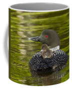 Loon Chick Rides On A Parents Back Coffee Mug
