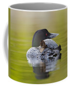 Loon Chick Resting On Parents Back Coffee Mug