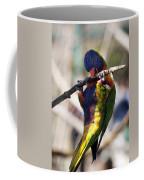 Lorikeet Bird Coffee Mug