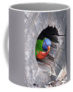 Lorikeet - Peek-a-boo Coffee Mug