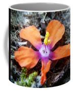 Lost Adhesion Coffee Mug