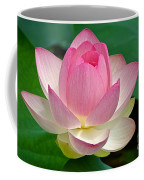 Lotus 7152010 Coffee Mug