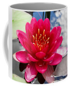 Lotus Cloud Coffee Mug