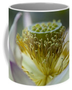 Lotus Detail Coffee Mug