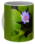 Lotus Flower And Lily Pad Coffee Mug
