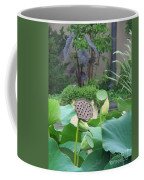 Lotus Flower In Lily Pond Coffee Mug