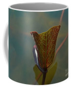Lotus Leaf Coffee Mug