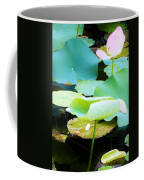 Lotus Lilly Pond Coffee Mug