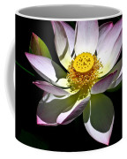 Lotus Of The Night Coffee Mug