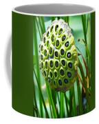 Lotus Pod Coffee Mug