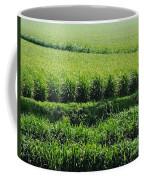 Louisiana Cane Field Coffee Mug