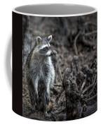 Louisiana Raccoon Coffee Mug
