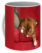 Lounging Spirit Coffee Mug