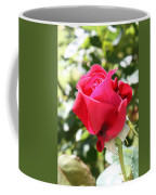 Love In Red Coffee Mug