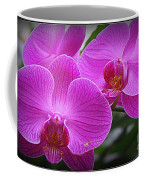 Lovely In Purple - Orchids Coffee Mug