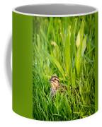 Low Profile Coffee Mug