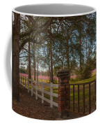 Lowcountry Gates To Boone Hall Plantation Coffee Mug