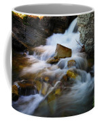Lower Apikumi Falls Glacier National Park Coffee Mug