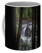 Lower Lewis Falls 3 Coffee Mug