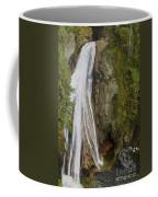 Lower Twin Falls Coffee Mug