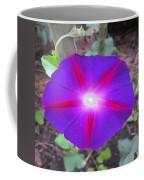 Luminous Morning Glory In Purple Shines On You Coffee Mug