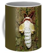 Luna Moth Actias Luna Coffee Mug