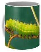 Luna Moth Caterpillar Coffee Mug