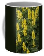 Lupin Blooms Coffee Mug