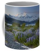 Lupine And Mount Elias Coffee Mug