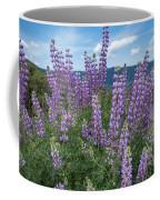 Lupine Blooms Of Bald Hills Coffee Mug
