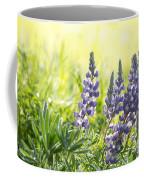 Lupine Light - Casper Mountain - Casper Wyoming Coffee Mug