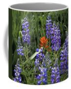 Lupine With Paintbrush 2 Coffee Mug