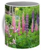 Lupines 5976 Coffee Mug