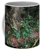 Lush Ferns Of The Forest Coffee Mug