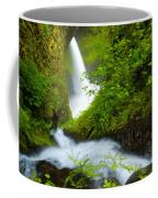 Lush Gorge Falls Coffee Mug