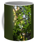 Lush Rhododendron Forest Coffee Mug