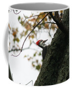 Lyndonville Pileated Woodpecker Coffee Mug