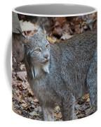Lynx Eyes Coffee Mug
