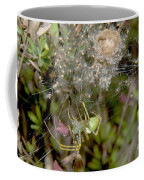 Lynx Spider And Young Coffee Mug