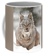 Lynx Stare Coffee Mug
