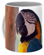 Macaw Head Study Coffee Mug