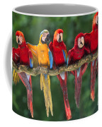 Macaws Coffee Mug
