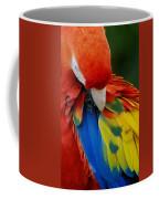 Macaws Of Color25 Coffee Mug