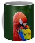 Macaws Of Color26 Coffee Mug