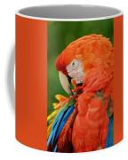 Macaws Of Color29 Coffee Mug