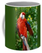 Macaws Of Color30 Coffee Mug