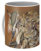 Machimus Sp. 31 Coffee Mug