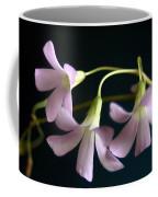 Macro Clover Coffee Mug
