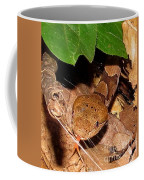 Macro Copperhead Coffee Mug